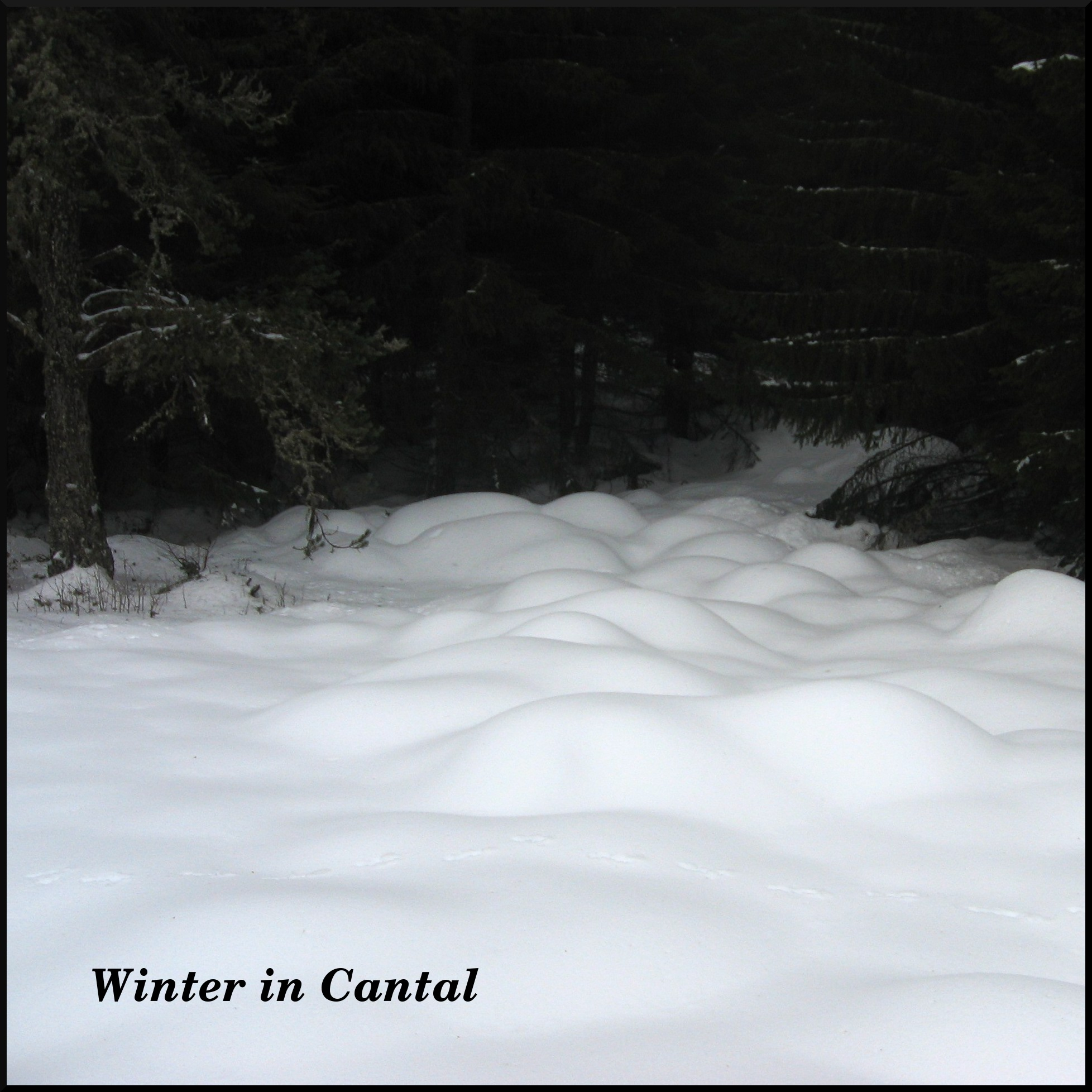 dana hilliot - winter in cantal